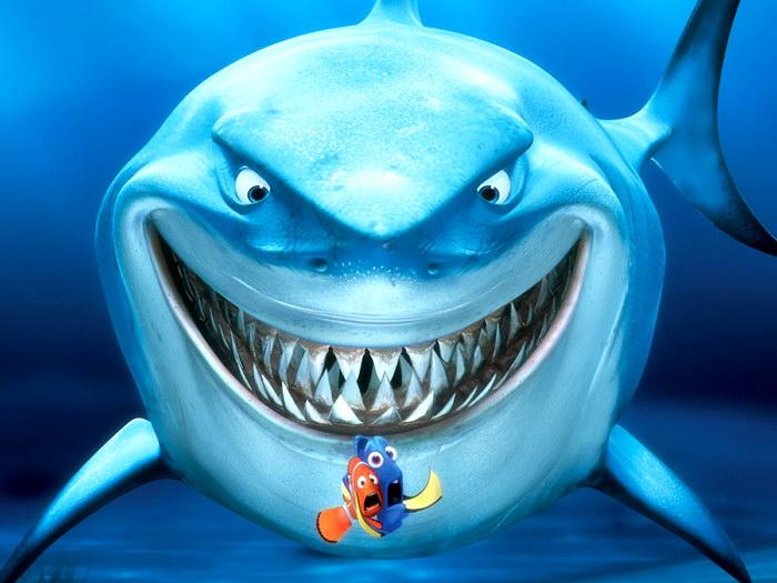 Sharks can regrow teeth.